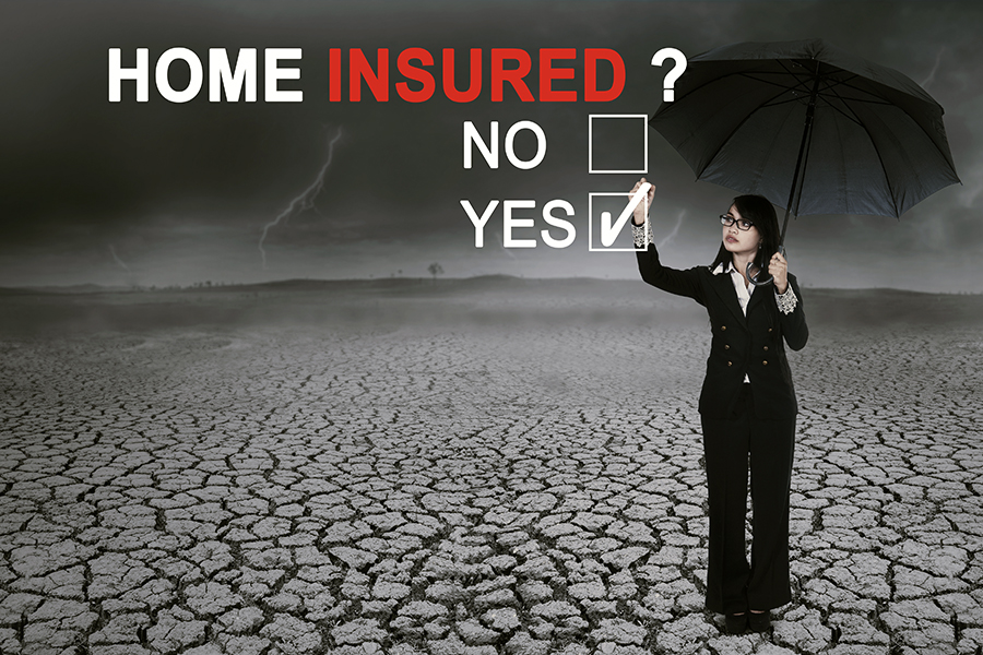 A Home Buyer' s Look at Homeowner's Insurance