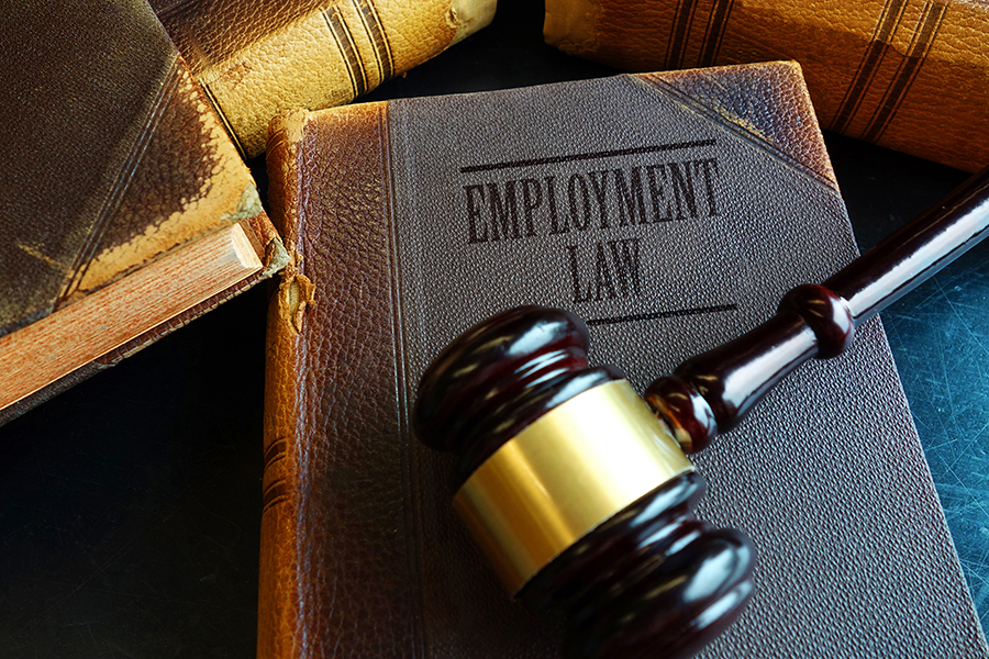 Businesses Need Employment Lawyers Too
